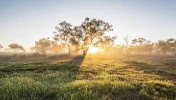 Balranald - Classic Australian Drive (Touring Route) - Love NSW Caravan & Camping