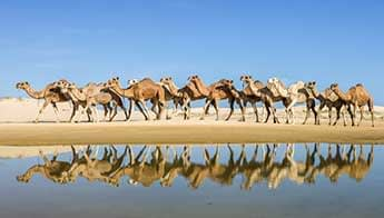 One Mile Beach & Anna Bay - Love NSW Caravan & Camping