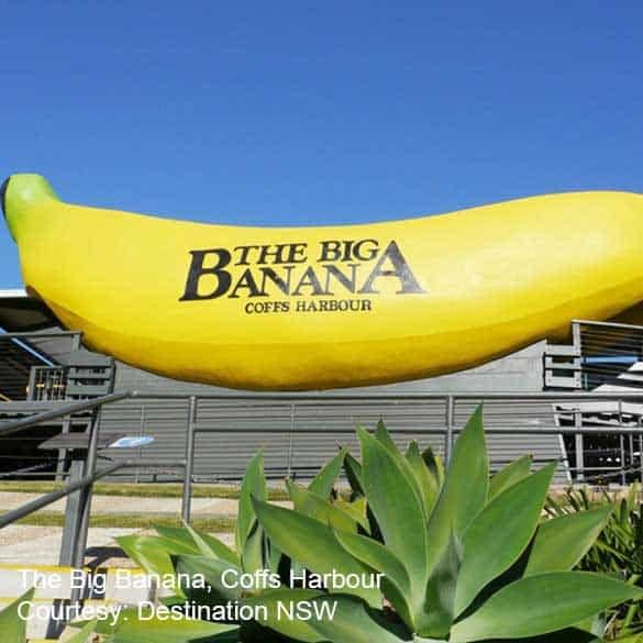 Coffs Coast Clarence Coast The Big Banana