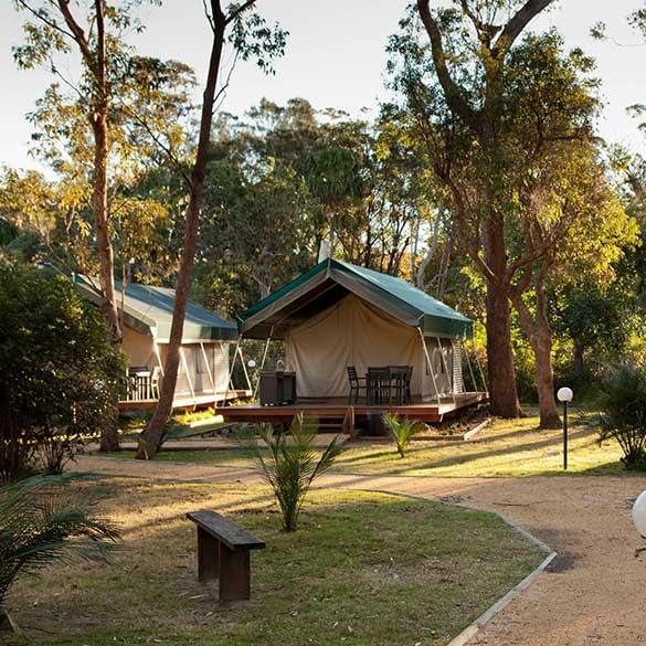 Holiday Parks Safari Tents- Caravan Camping NSW