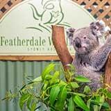 Featherdale Wildlife Park Sydney Greater Sydney Region NSW