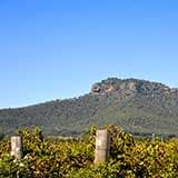 Werakata National Park Cessnock Hunter Valley Region NSW