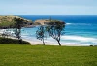 South-Coast-Holiday-Parks-Killalea-3.jpg
