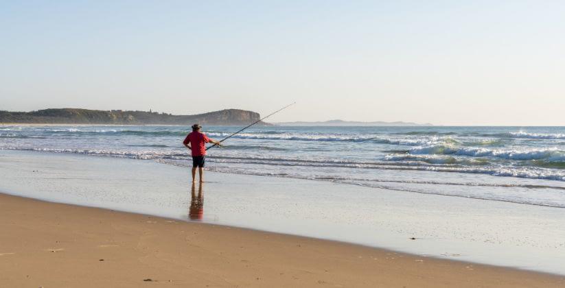 Monterey - Who Loves Fishing